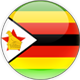 Zimbabwe team logo